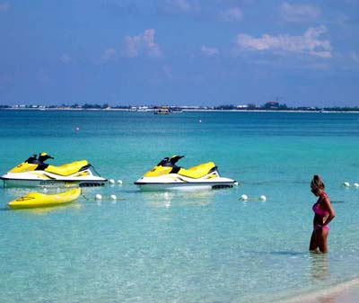 Tulip Travel Services Pvt Ltd